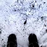 4 2009-02-07 neige Courtomer 042