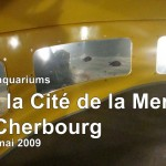 9 2009-05-05 CE2-CM1-CM2 Normandie 078z